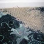 carpet moth removal