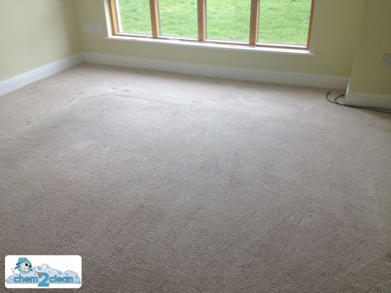carpet floor after we cleaned in a rented accommodation